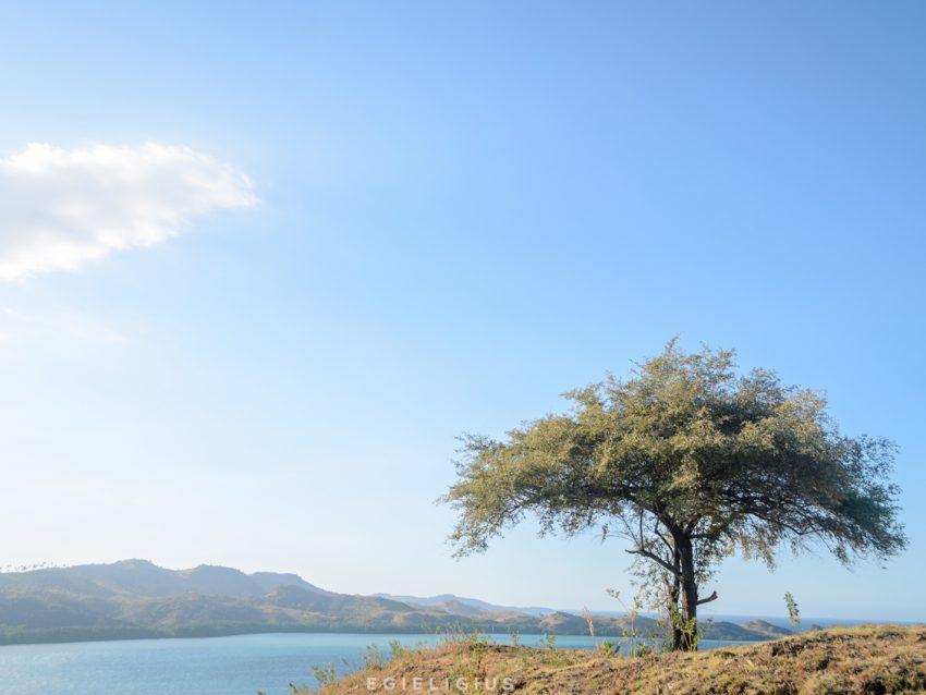 Daftar Wisata Labuan Bajo